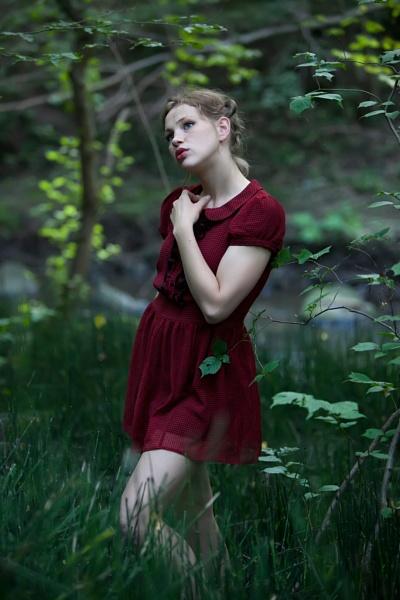 Alice in ... by wieslaw_czerniawski