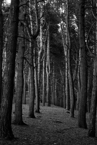 Tandle Hill. by szlatoszlavek