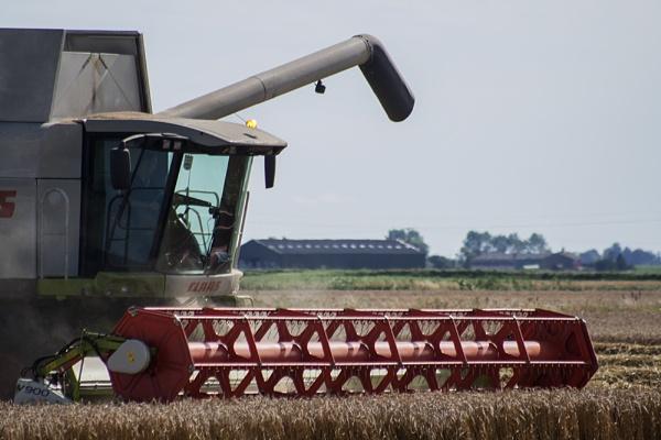 Harvester by GordonLack