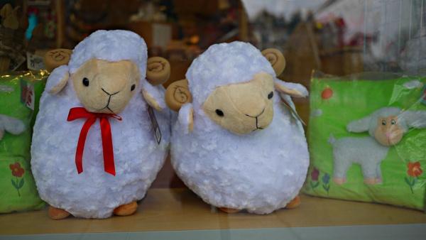 Sheep by notsuigeneris