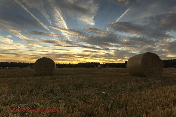 North Norfolk Harvest by PaulThetfordPhotography
