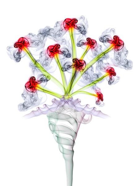 Smoke Flower Bouquet by paulbaybutphotography