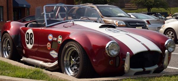 66 Shelby Cobra by TedBraid