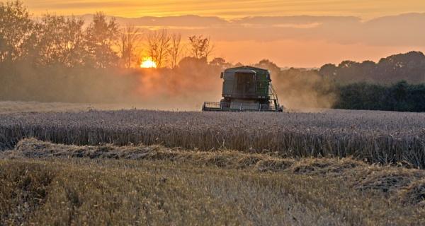 Harvest Sunset by Gavin_Duxbury