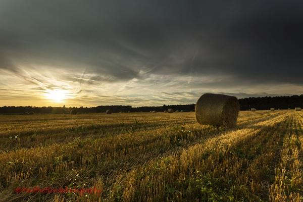 North Norfolk Harvest 2 by PaulThetfordPhotography