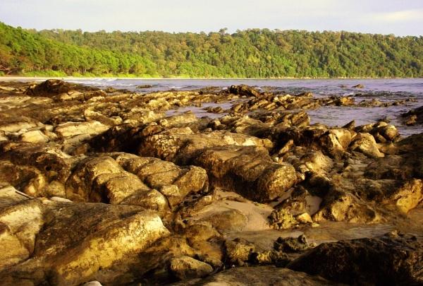 Rocky beach by Priti