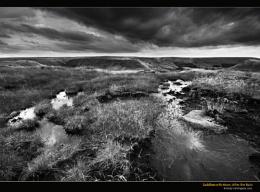 Saddleworth Moor, After the Rain