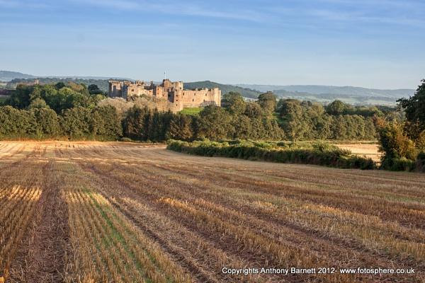 Raglan Castle by fotosphere