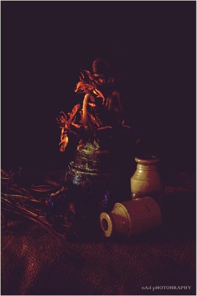 Fireside Glow by NDODS