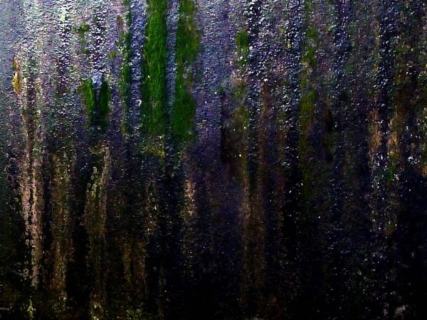 art by rain by mondaldebasis30