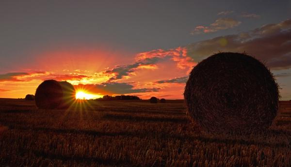 Harvest Sunset by carper123