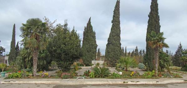 mardakan arboretum 184 by MAKRADA