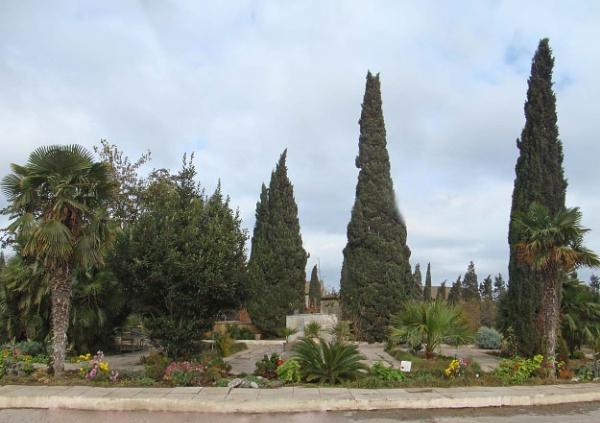 mardakan arboretum 185 by MAKRADA