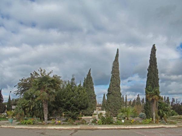 mardakan arboretum 186 big by MAKRADA