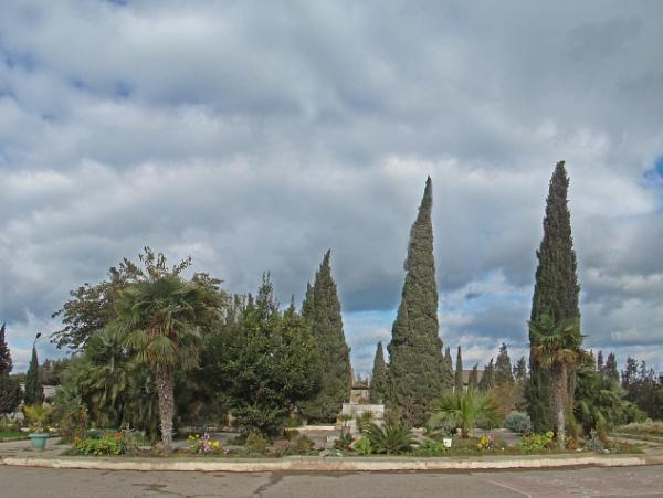 mardakan arboretum 186 by MAKRADA