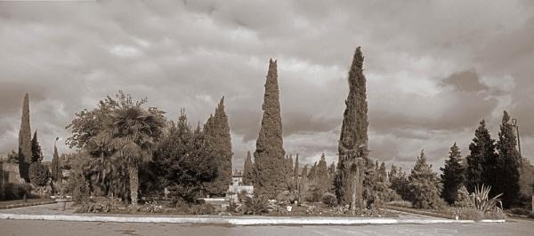 mardakan arboretum 187c by MAKRADA