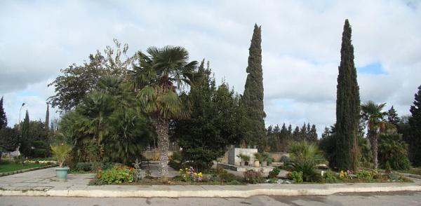 mardakan arboretum 188b by MAKRADA