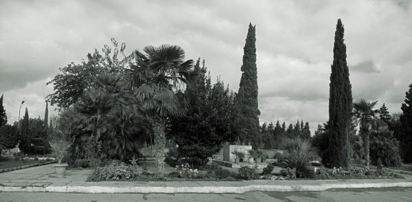 mardakan arboretum 188c by MAKRADA
