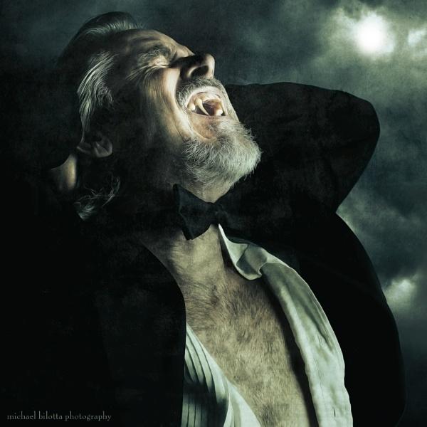 Mr. Talbot\'s Wild Night by MichaelBilottaPhotography