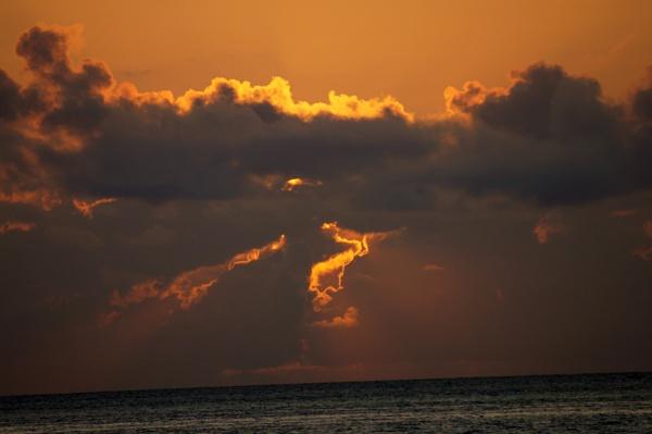 sunrise Florida by TedBraid