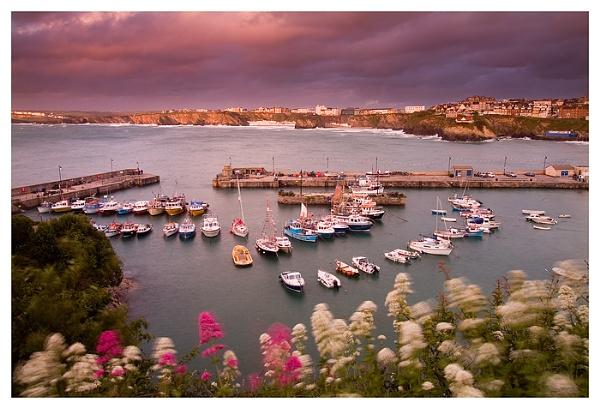 Newquay Harbour by dplatt2000