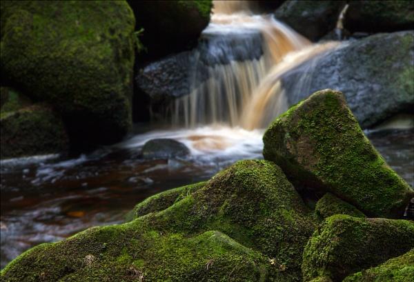 Green Rocks by Briwooly