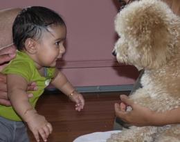 Loki and Shenge Puppy.