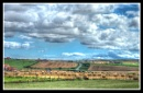 Fields near Whitby Abbey by Ian G W
