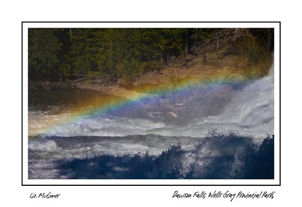 Dawson Falls by LizMutimer