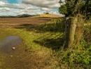 Berwickshire in Early Autumn by Ewanneil