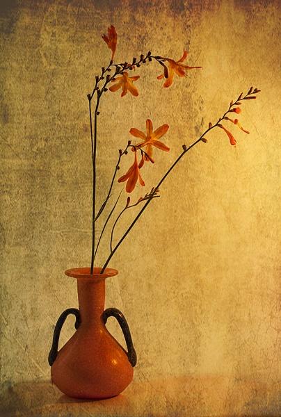 Montbretia in Orange Vase by Irishkate