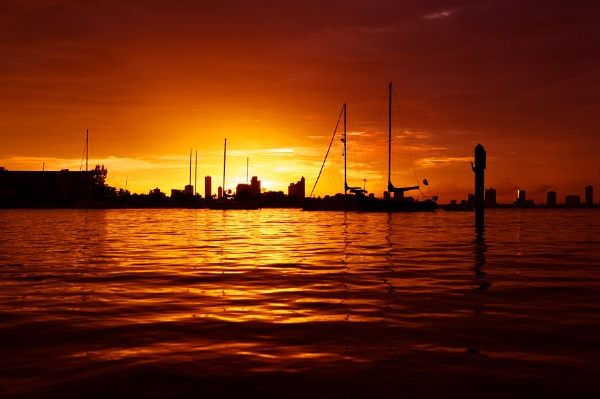Miami Sunset by Scottelly