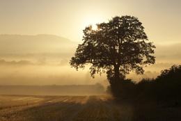 Season of Mists....