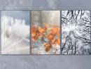 d'hiver by Pamella