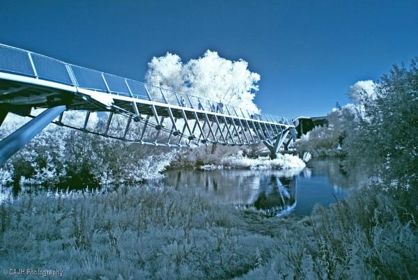 Living Bridge, University of Limerick. by jholmes