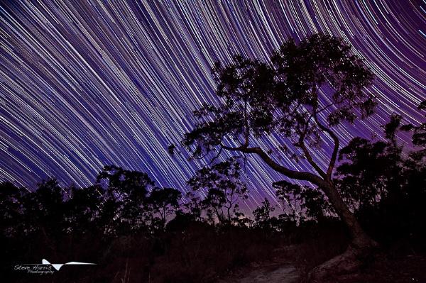 Night\'s Sky by SteveHarry