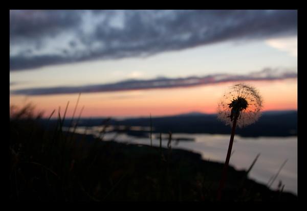 The clock tick\'s towards sundown by boghopper