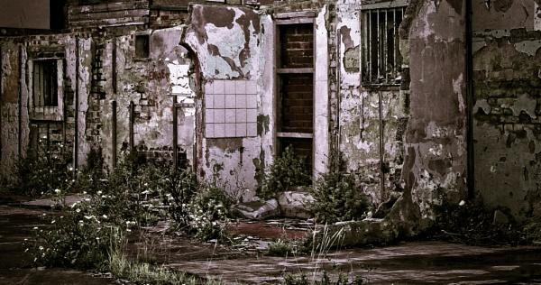 Urban Decay by Rod20