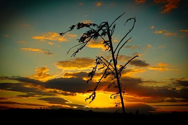 Irish sunset by sirhcelah100