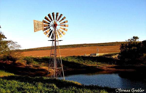 Windmill by Hermanus