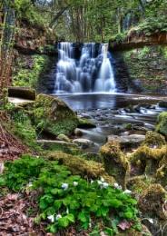 Goit Stock Falls - Cullingworth