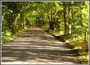 The  Dappled Lane by macroman