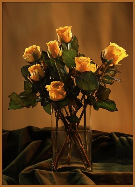 Yellow Roses by Irishkate