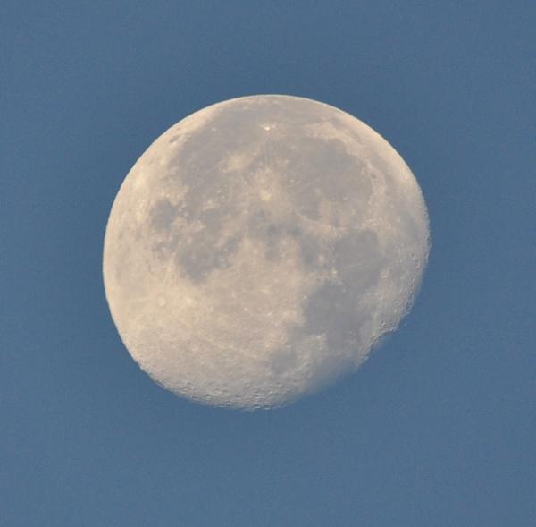 Daytime mooning by Bryan_Marshall