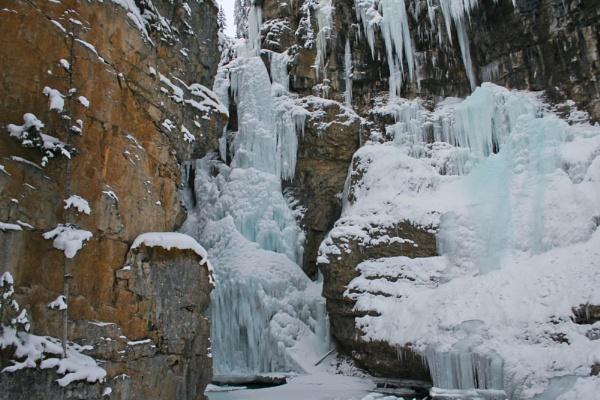 Freezing by elainecookstown