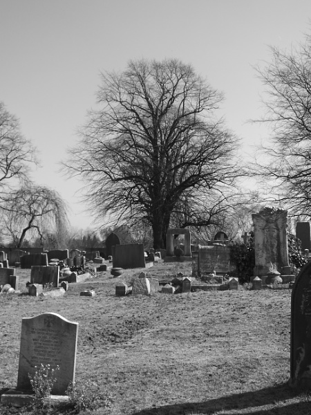 Final Resting Place by magiccam
