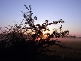 Sun At Sunrise