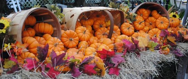 Autumn Decor by kl0verleaf