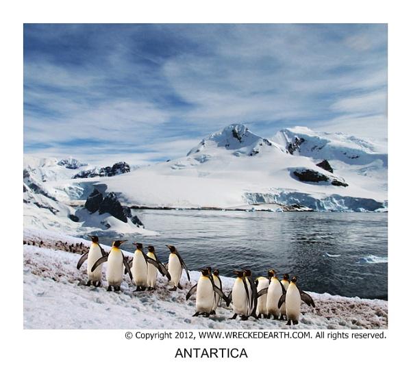 Antartica by Birte