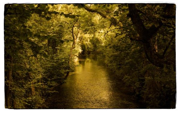 Autumn Glow by Herge88